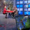 TVR 2 – Ce s-a intamplat cu padurile dupa scandalul Schweighofer?