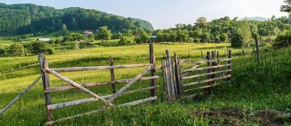 Tăieri ilegale, înstrăinarea terenurilor forestiere – declinul comunităţilor rurale