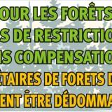 Proprietarii de păduri din România protestează timp de cinci zile la Strasbourg