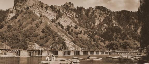 Societăţile de exploatare şi prelucrare a lemnului la 1900 – 1948