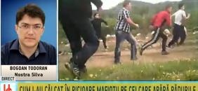 VIOLENTELE MAFIOTE DIN RETEZAT – B1TV – 25 mai 2015