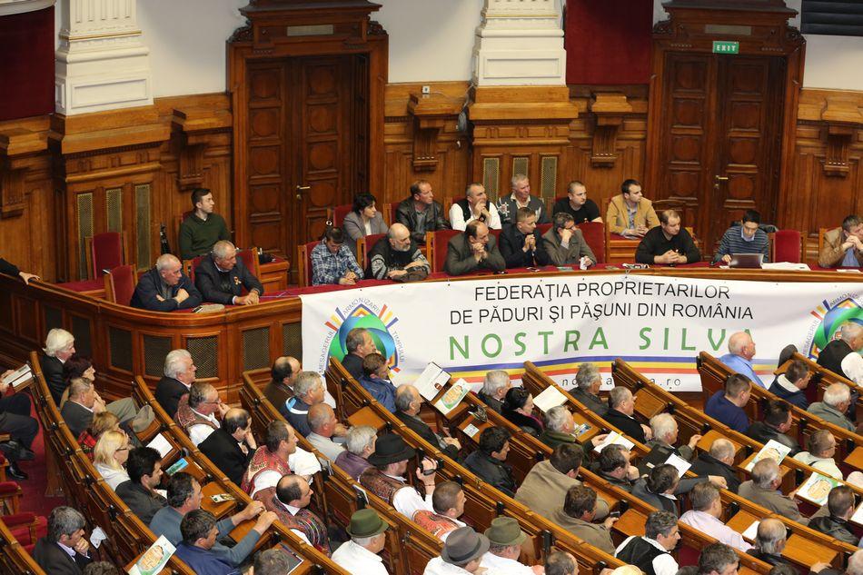 cn-nostrasilva-29-martie-2014-26