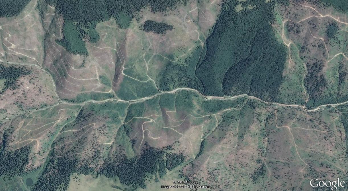 borsa-taieri-ilegale-2013-2015