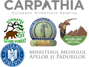 conservation-carpathia-ministerul-mediului-dna-guard-forest
