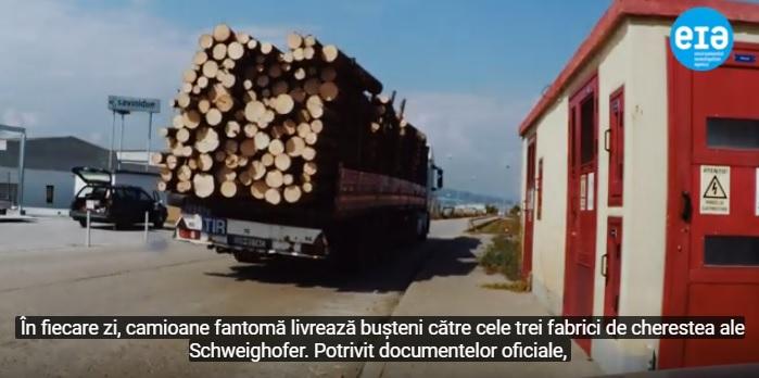 lemn-ilegal-schweighofer